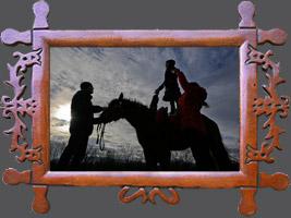 Навчання-семінар Науково-виробнича асоціація «Племконецентр»: Використання коней гуцульської породи для різних форм гіпотерапії. Місце: Свалява в Україні